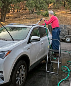 Willis movement on ladder washing top of car
