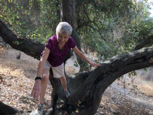 Joan Climbing a Tree