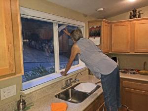 Author, Joan, washing kitchen windows