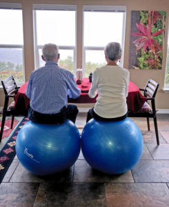 Willis and Joan sitting on big balls at dining table with view
