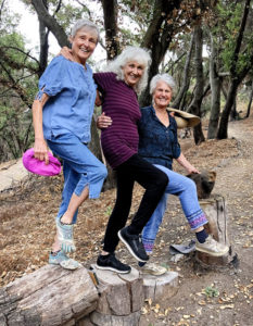 Joan, Lora, and Joyce balancing on a log near a bear swith Chainsaw Sculpted Bear